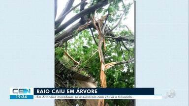 Raio caiu em árvore em Altaneira - Saiba mais em g1.com.br/ce