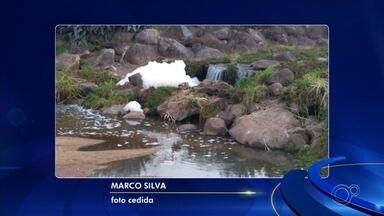 Lago do Parque Botânico amanhece com espuma e água suja em Jundiaí - O lago do Parque Botânico do Jardim Tulipas, em Jundiaí (SP), amanheceu com espuma e água suja nesta quarta-feira (19).