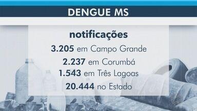 Dengue continua avançando no estado - Já são 13 mortes confirmadas, sendo 4 delas em Campo Grande