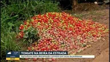 Agricultores estão descartando tomates na beira da estrada - Caso é em Ribeirão Bonito, no sudoeste do estado.