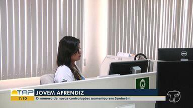 Jovem Aprendiz: número de novas contratações aumenta em Santarém - Oportunidade colabora para jovens serem inseridos no mercado de trabalho.