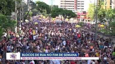 Carnaval de rua no fim de semana - Por causa da segurança prefeitura de SP muda itinerário de alguns blocos