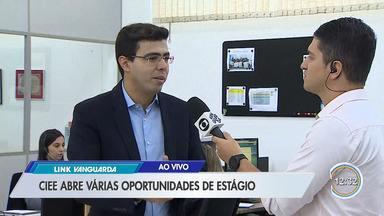 Ciee está com inscrições abertas para 250 vagas de estágio - Só na Câmara de São José são 50 vagas.