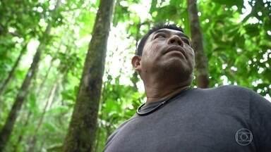 Brasileiros e estrangeiros trabalham com preservação da Amazônia - Globo Repórter mostra pessoas apaixonadas pela floresta, como a venezuelana Vanessa, que trabalha com turismo, e o ex-caçador Naldo, que atualmente só planta e pesca o que precisa para sobreviver.
