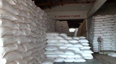 Conab inaugura mais um ponto de comercialização de sementes de milho no Piauí - Conab inaugura mais um ponto de comercialização de sementes de milho no Piauí