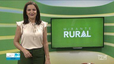 Veja os destaques do Mirante Rural - Com Célia Fontenele.