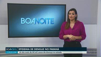 Epidemia de dengue no Paraná - Já são mais de 44 mil casos da doença no estado.