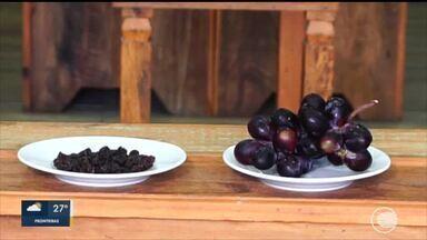 Casa Fácil: nutricionista explica sobre o poder nutritivo das frutas cristalizadas - Casa Fácil: nutricionista explica sobre o poder nutritivo das frutas cristalizadas