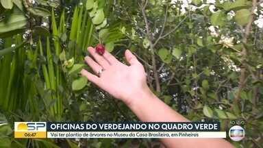 Quadro Verde: oficinas do Verdejando na Feira Sabor Nacional - Vai ter plantio de árvores na feira, organizada pelo Museu da Casa Brasileira, em Pinheiros