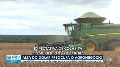 Produtores rurais da região oeste estão preocupado com impactos no covid-19 no agronegócio - Em 2020 houve boa colheita de soja e algodão mas e epidemia torna o dólar instável.