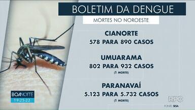 Paraná tem 49 mortes por dengue - 17 mortes foram registradas no Noroeste do Estado