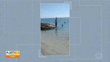 Porto de Galinhas fica vazia e guardas retiram pessoas que estavam no mar - Medidas entraram em vigor por causa do novo coronavírus