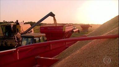 Tempo seco ajuda na colheita do arroz do agronegócio - Tempo seco ajuda na colheita do arroz do agronegócio