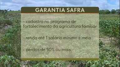 Pagamento de benefício social ajuda produtores rurais atingidos pela seca do Nordeste - Pagamento de benefício social ajuda produtores rurais atingidos pela seca do Nordeste