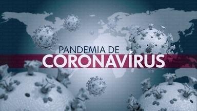 Boletim JN: Brasil tem 2.433 casos de coronavírus e 57 mortes - Ministro da Saúde, Luiz Henrique Mandetta, atualizou os números em coletiva.