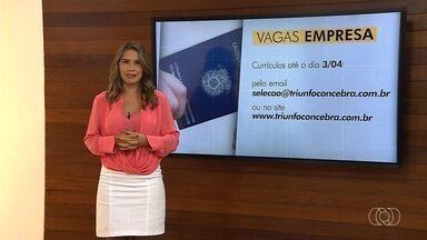 Confira ofertas de emprego em Goiás - Há oportunidades em várias áreas de atuação e cidades.