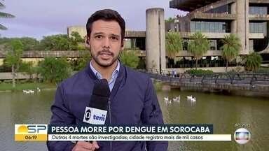 Sorocaba sofre com a dengue e já registra mortes - 4 casos são investigados e um foi confirmado.