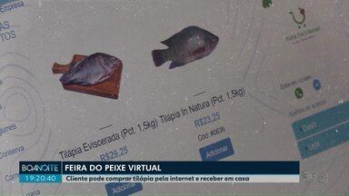 Feira do Peixe é virtual neste ano em Ponta Grossa - Cliente pode comprar tilápia pela internet e receber em casa.