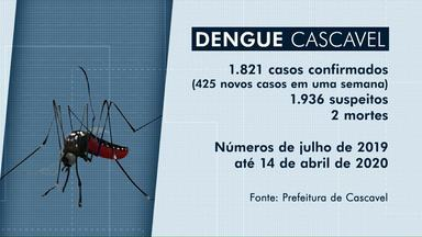 Números de casos de dengue continuam aumentando no Paraná - Em Cascavel o aumento foi de trinta por cento. São mais de mil e oitocentos casos confirmados da doença.