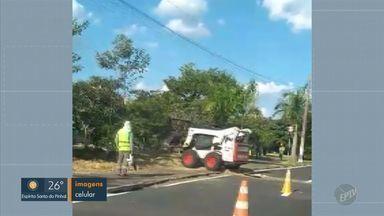 Construção de ciclovia é embargada em Campinas - Obra é na Marginal do Piçarrão e foi interrompida porque palmeiras plantadas no local estavam sendo arrancadas.