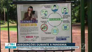 Zoológico em Santarém adequa rotina durante pandemia de coronavírus - Mudança é para manter a segurança dos trabalhadores e animais.