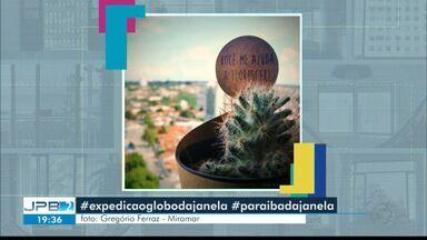 Confira as fotos da campanha Paraíba da Janela - Três fotos foram exibidas no JPB2 desta segunda-feira.