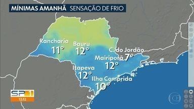 Frente fria a caminho de SP deve provocar chuva com rajadas de vento e, depois, frio - Madrugada de quinta-feira vai ser gelada na maioria das regiões paulistas.