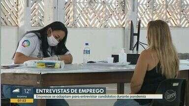 Empresas se adaptam para entrevistar candidatos às vagas de emprego durante pandemia - Segundo especialista de recursos humanos, meios virtuais aproximam interlocutor do entrevistado.