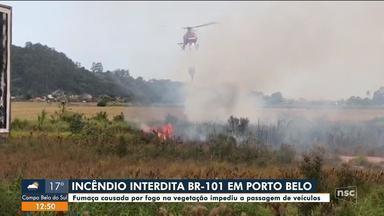 Incêndio em vegetação interdita BR-101 em Porto Belo - Incêndio em vegetação interdita BR-101 em Porto Belo