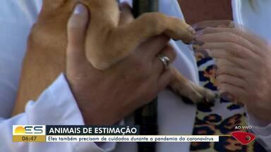 Animais de estimação necessitam de cuidados de higiene durante pandemia - Veterinária do Centro de Vigilância em Saúde Ambiental de Vitória fala sobre o assunto.