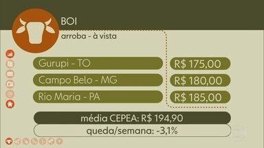 Veja os preços do Boi gordo - Veja os preços do Boi gordo