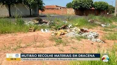 Dracena começa mutirão de limpeza contra a dengue - Cidade já tem quase 3 mil casos de dengue este ano.