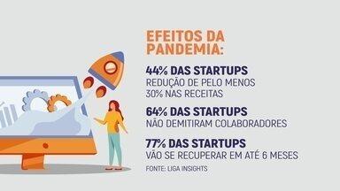 Capacidade de adaptação deixa startups brasileiras otimistas para retomada dos negócios - Empresários contam suas experiências e mostram como estão se adaptando à crise gerada pela pandemia do coronavírus.