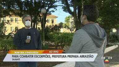 Taubaté prepara arrastão para combater escorpiões - Prefeitura vai recolher materiais em diversos bairros.
