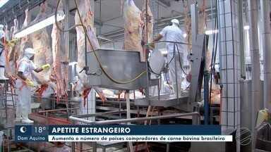 Carne bovina brasileira conquista novos mercados - Carne bovina brasileira conquista novos mercados