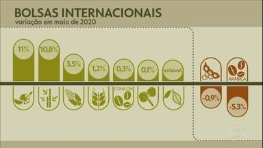 Confira a cotação dos principais produtos agrícolas - A maior parte fechou o mês em alta nas bolsas internacionais.