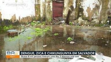 Quase oito mil pessoas foram atingidos pelo mosquito Aedes Aegypti em Salvador - Teve um crescimento de mais de 300% no numero de casos na capital baiana.