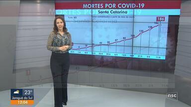 SC tem 12,9 mil pessoa com coronavírus e 186 mortes - SC tem 12,9 mil pessoa com coronavírus e 186 mortes