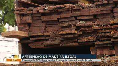 Operação da Cipamb apreende caminhões com madeira ilegal em Santarém - PRF apreendeu 58m³ de madeira em Belterra.
