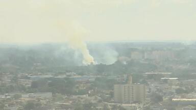 Região de Araçatuba tem aumento no número de queimadas - Na região de Araçatuba teve um aumento no número dessas ocorrências de incêndio.