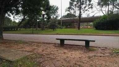 Saiba como o Parque do Ibirapuera está sendo cuidado após sua interdição - O Parque do Ibirapuera está fechado desde o dia 21 de março, como parte de uma das medidas de isolamento por causa do coronavírus. Apenas funcionários da manutenção podem entrar no local para fazer a limpeza.