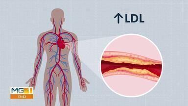 Nanopartículas de óleo de cozinha têm potencial para combater colesterol, diz estudo - Nanopartículas desenvolvidas no estudo podem ser usadas em iogurtes e sachês para consumo.