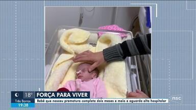 Bebê que nasceu prematura completa 2,5 meses e aguarda alta hospitalar - Bebê que nasceu prematura completa 2,5 meses e aguarda alta hospitalar