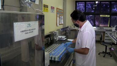 Embrapa muda logística para recebimento de amostras de leite na Zona da Mata - Em meio à pandemia da Covid-19, empresa terceirizou serviço para buscar material, ao invés de fazer com que o cliente fosse responsável pelo envio.