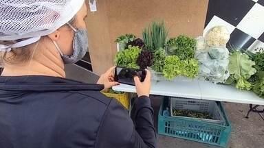 Casal investe na produção de legumes e vegetais para manter sustento durante a pandemia - Depois de perder o emprego por conta da pandemia do novo coronavírus, um casal da região noroeste paulista resolveu investir na produção de legumes e vegetais para manter sustento.