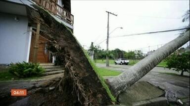 Após ciclone, cidades do Sul do país enfrentam cenário de destruição - SC decreta situação de calamidade.