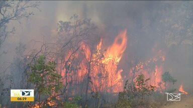 Aumenta número de focos de queimadas no Maranhão - Segundo o Instituto Nacional de Pesquisas Espaciais (INPE) aumentou a quantidade de focos de queimadas nas últimas 48h no interior do estado e o cerrado é o mais afetado até agora.