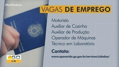 Veja vagas de emprego em Goiás - Confira como se candidatar.