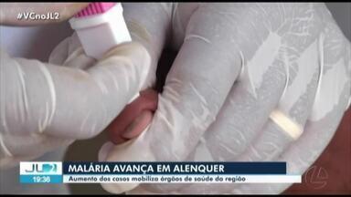 Aumento dos casos de malária mobiliza órgãos de saúde no oeste do Pará - Em Alenquer, a secretaria de saúde registrou quase 700 casos só no primeiro semestre de 2020.