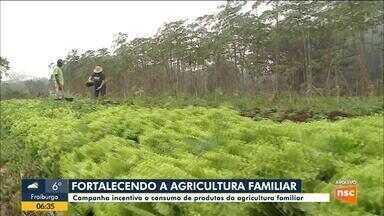 Campanha incentiva o consumo de produtos da agricultura familiar em SC - Campanha incentiva o consumo de produtos da agricultura familiar em SC